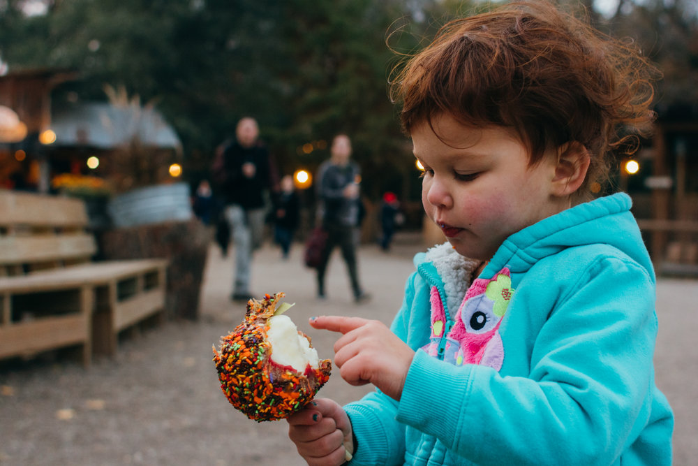Red hair white girl looking at her half eaten caramel apple while at the pumpkin patch.