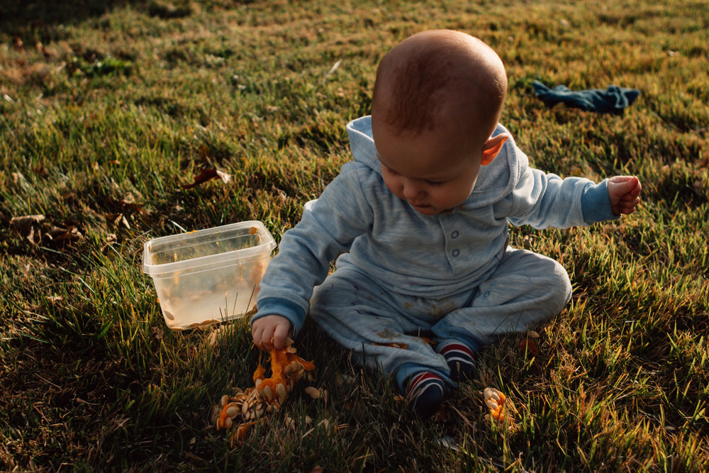 A photo of a small white baby boy playing with pumpkin seeds in the grass.