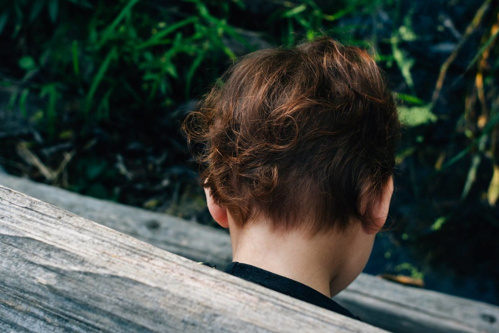 Back of a little girls head, focusing on the tiny red curls in her hair.