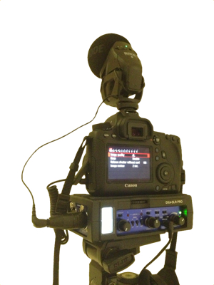 A simple DSLR video set up