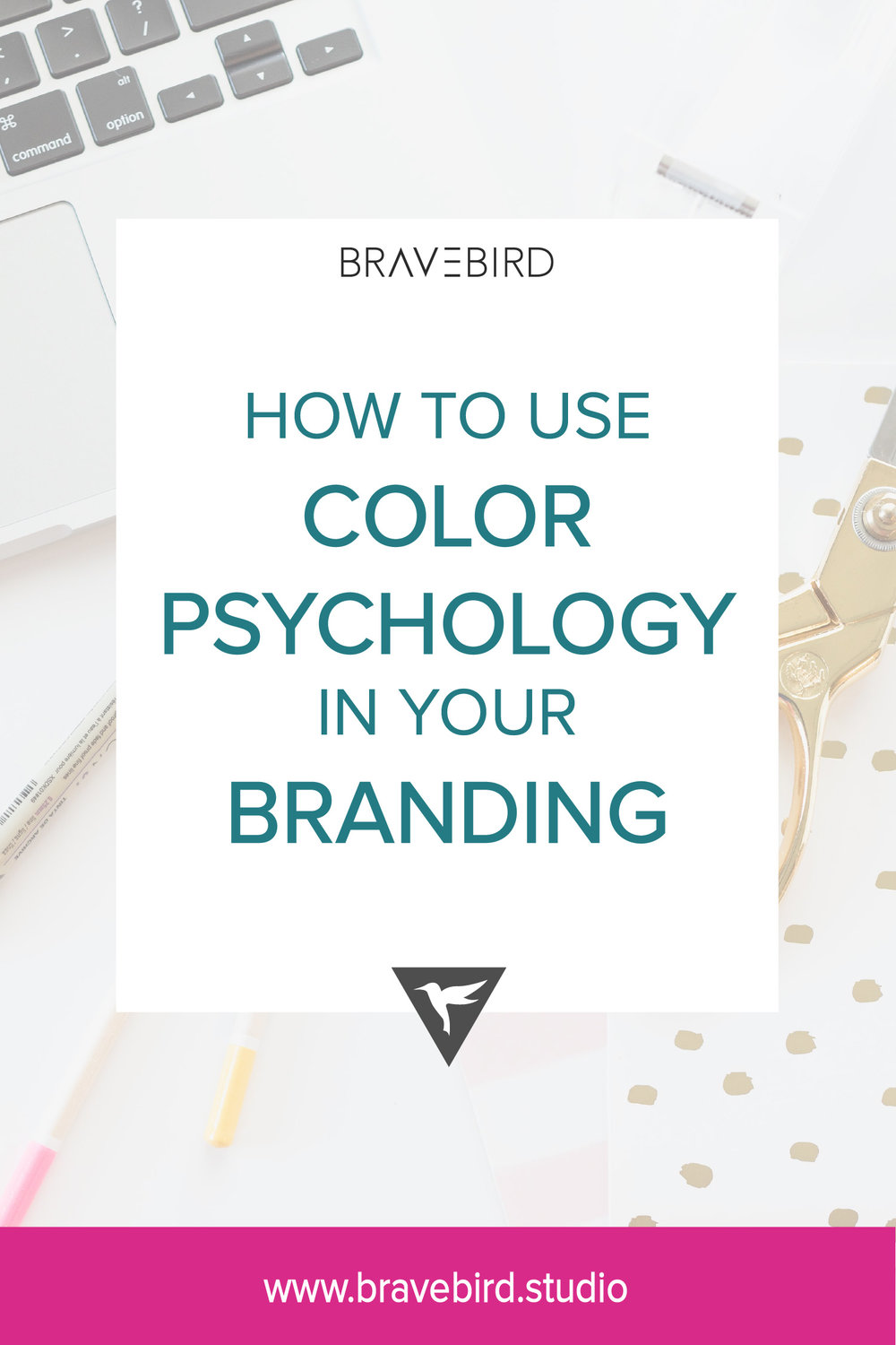 How to use color psychology in your branding | Bravebird Studio