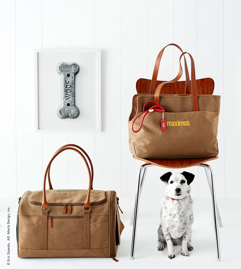 photo of a small black & white dog sitting under a chair next to two dog carrier bags made for Williams-Sonoma, Inc.
