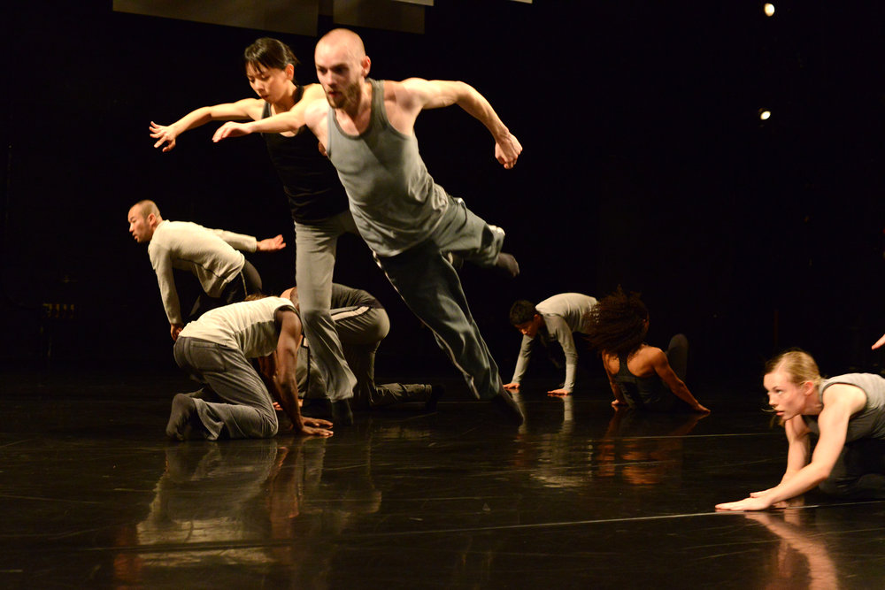 """Eleven Accords""  Christopher House - TORONTO DANCE THEATRE  Photo by Guntar Kravis"