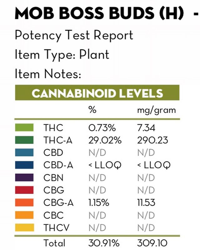 Guess What Day IT IS?! Another round of Mob Boss and Bio Chem testing over 30% total cannabinoids!!! @photo_sensi_this @inspektornugget @joshraff @garywong670 @tyl0rbuckley @hempdadi @greenstargrower @keytolifenutrients @rootwisesoildynamics @cogos_original @hempdadi @mark_troutman.  #cannabis #farming #mayflowerfarms #420 #weed #weedstagram #denver #coloradogrown #midsonly #trichedout #instaweed #cultivate #ganja #cannabiscommunity #growtogether #thc #letssesh #weedporn #mmj #mobboss #medicine #terpenes #terps  #fire #trichomes #trichomefarmer #terpenefarmer #midsgang2018 #biochem