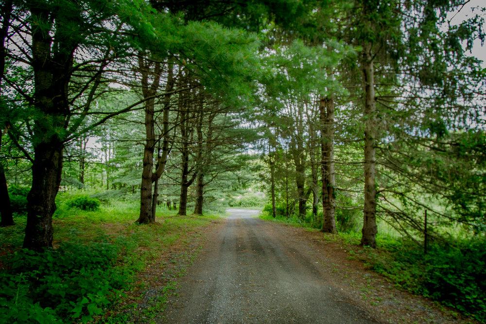 11-Shultis-Farm-Rd-Bearsville-Woodstock-NY-2.jpg