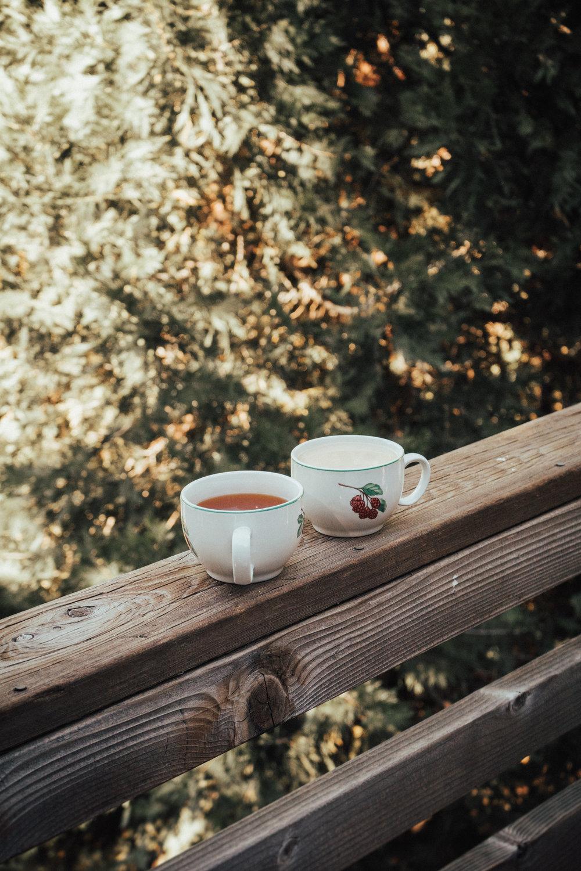 tea-in-woods