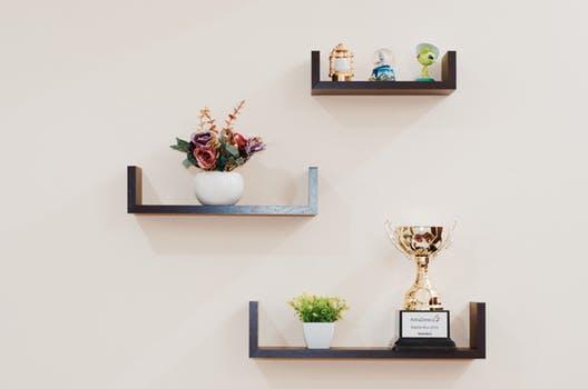plant-prize-shelves-74942.jpg