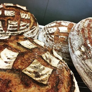 bread3.jpeg