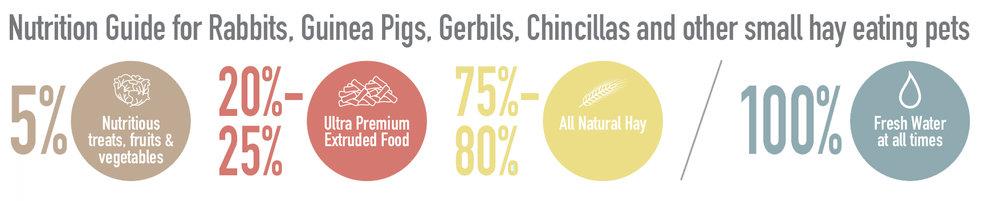Genesis Nutrition Guide.jpg
