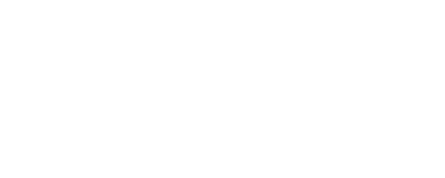 Bridge CFO Services LLC
