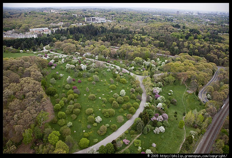 An overhead shot of what the Arboretum looks like, surrounded by Boston. Photo courtesy of P. Greenspun.