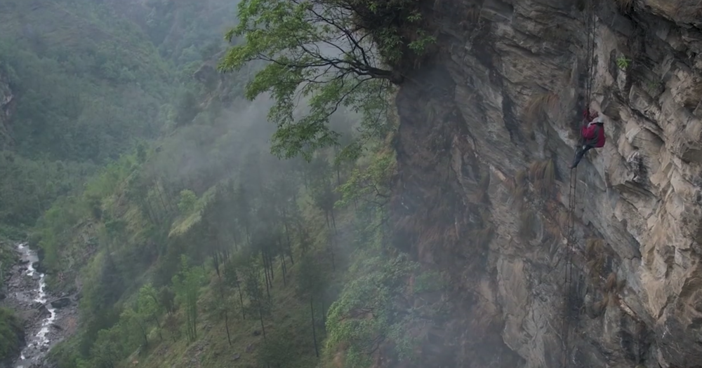 The Last Honey Hunter: Directed by Ben Knight -- In the mist-shrouded mountains of Nepal's Hongu River valley, the Kulung people carve their lives out of the land and practice an ancient form of animism structured around the god Rongkemi. There you will find a wiry and unassuming man named Mauli Dhan Rai, who is believed to be chosen by the gods for the perilous rite of honey harvesting. The task, which involves climbing rope ladders up sheer cliffs to cut down combs made by the world's largest honeybee (before collecting the poisonous honey within), is extraordinarily dangerous. But it's a spiritual pursuit soaked in myth that the Kulung believe taps directly into the gods. And with roads, technology and market forces, it may not be around for long.