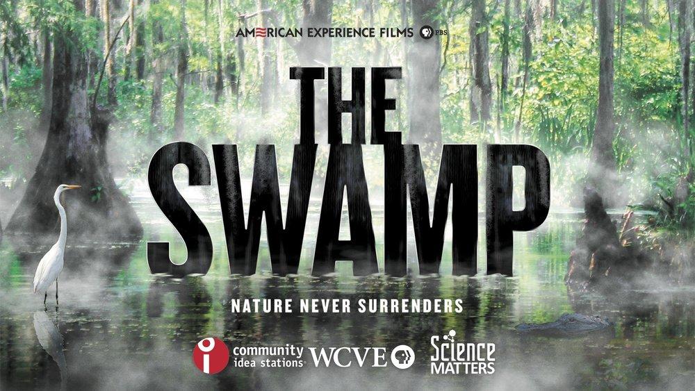 AE Films_The Swamp_CIS_WCVE_SM_horiz.jpg