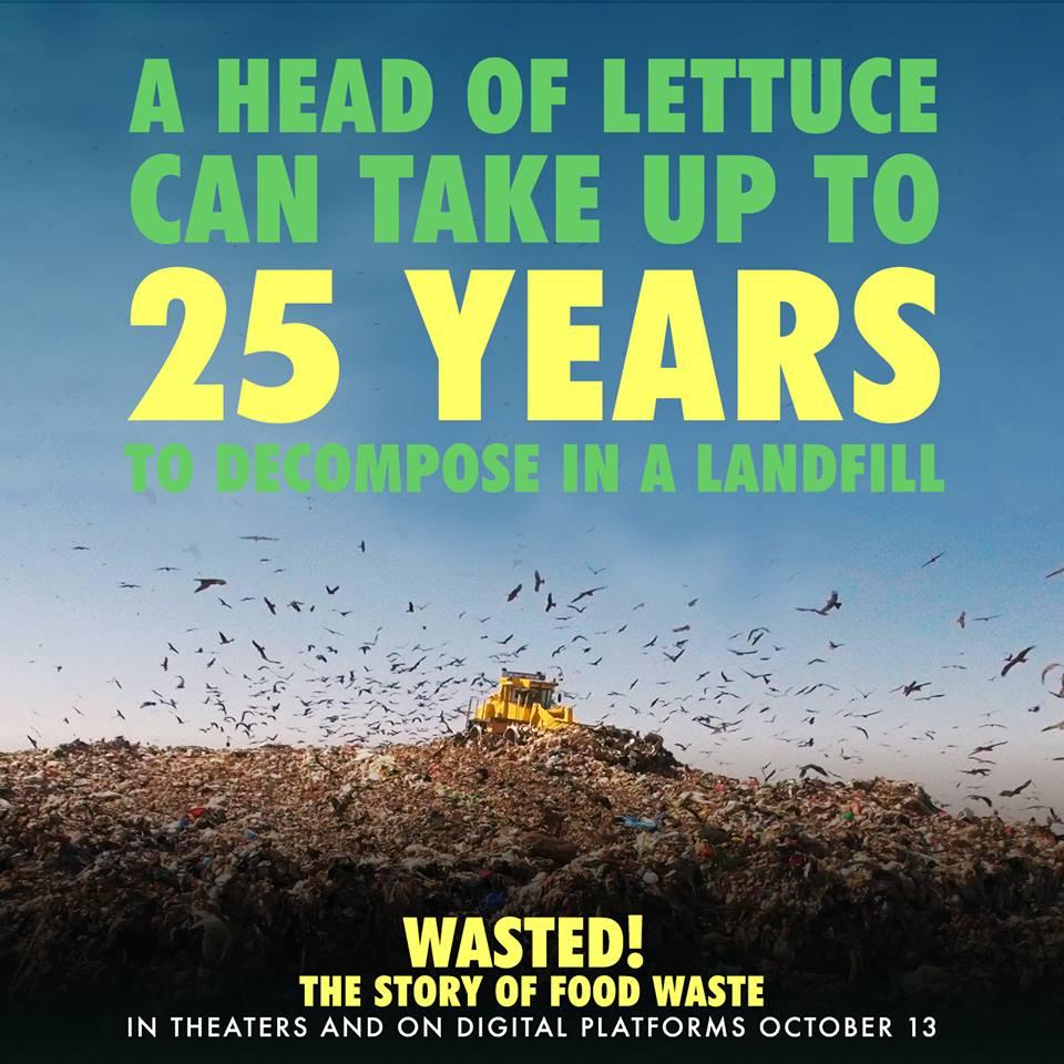 Landfill_Wasted.jpg