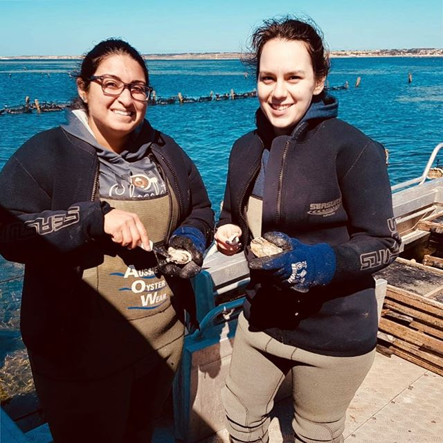 All the way from the USA...fantastic to show Thalia and Sam the ropes (and the baskets, and the trays, and the oysters...) #deckieforaday #yorkepeninsula #satourism #tourismaustralia #tourismsa #stansbury