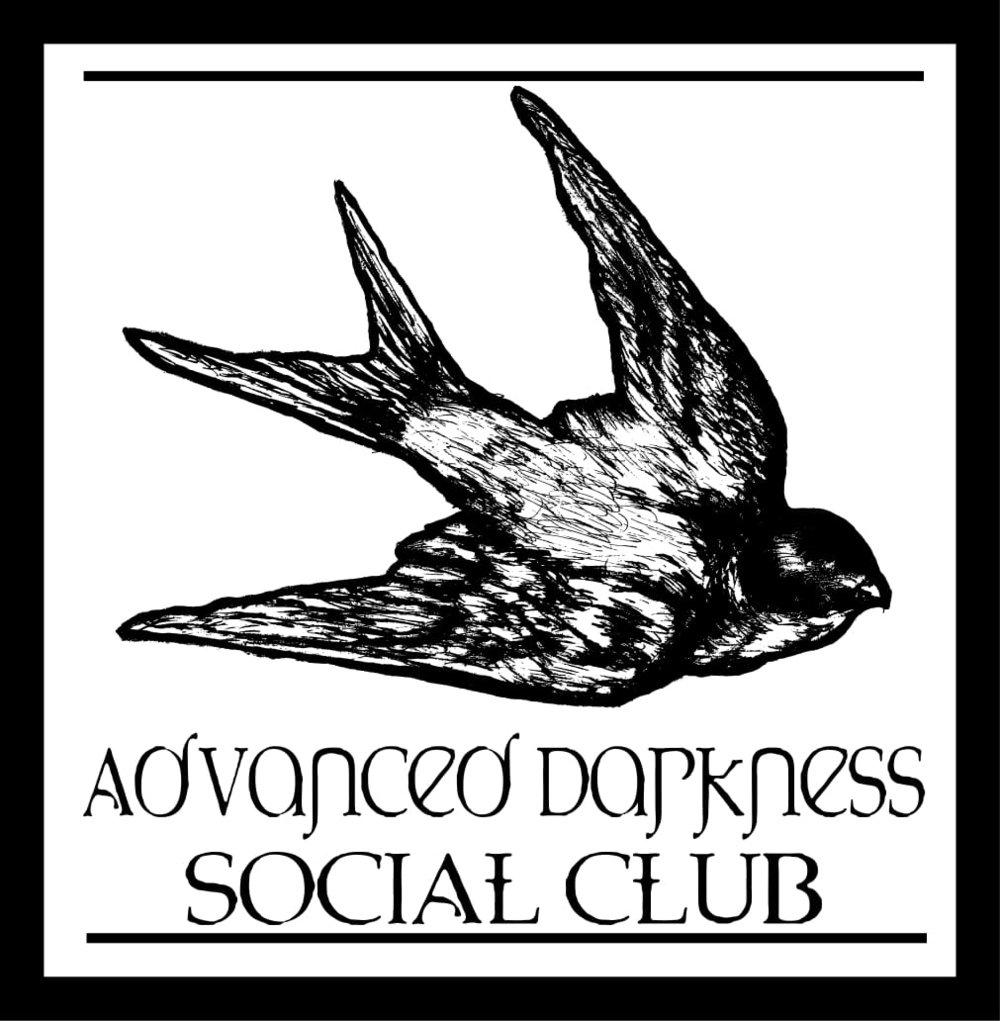 AdvancedDarknessBird-1.jpg