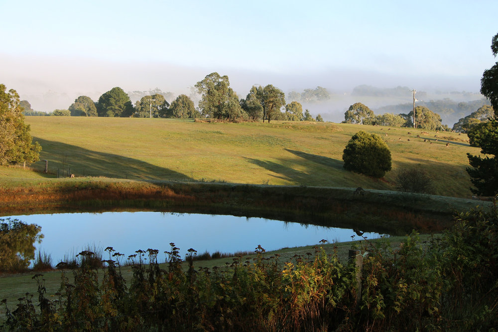 View from Arcadia Atelier, near Daylesford, Victoria.