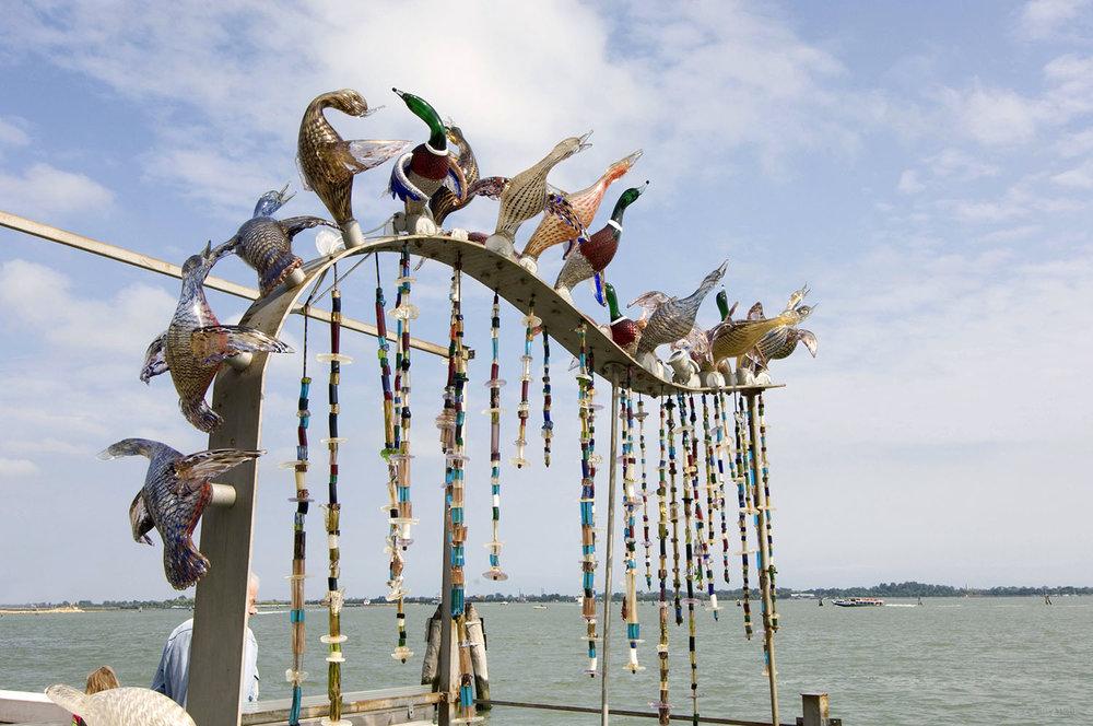 Italy / Murano-Venice / The birds
