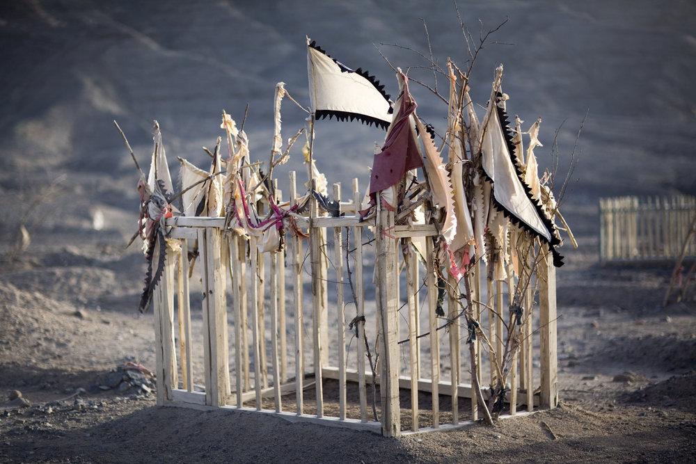Living Shrines- Lisa Ross