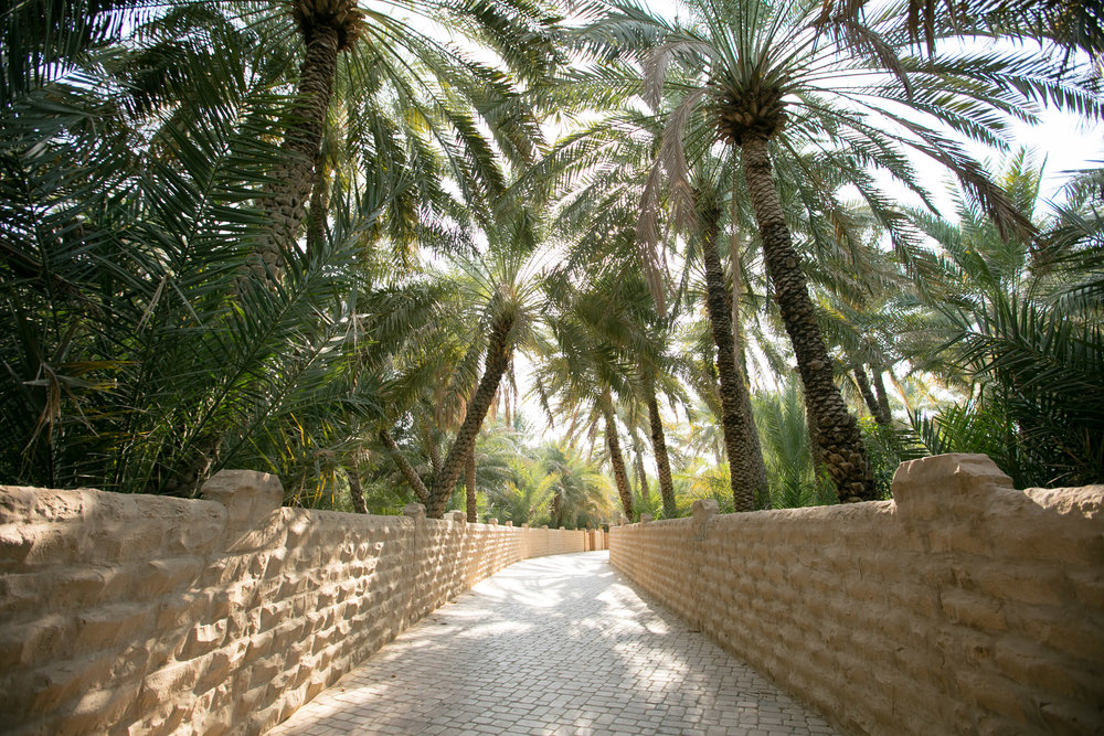 Al Ain Oasis is a UNESCO World Heritage Site and is characterised by palm-lined corridors and greenery amid the desert landscape.