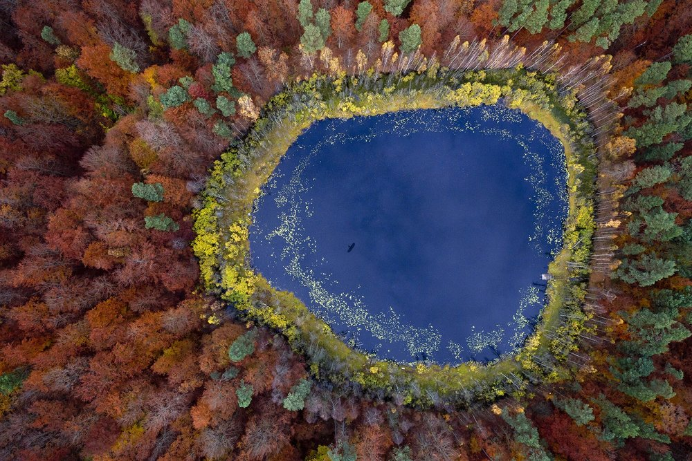 Kacper Kowalski. Cultural Reflections. Taken in Poland and first prize winner in nature, 2012.Courtesy: TCA Abu Dhabi