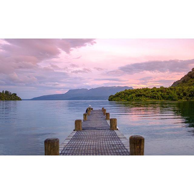 One of my favourite views around Rotorua!.⠀ 📸 @kurtmatthewsphotography⠀ .⠀ .⠀ .⠀ .⠀ .⠀ #newzealand #nz #nzlandscape #fuji #fujix100f #x100f #landscape #sunset #laketarawera #rotorua #rotoruanz #nzviews #nzroattrip #nztour #lake #outdoors #mountainsunset #igsunset #worldsunset #bestview #earthpics