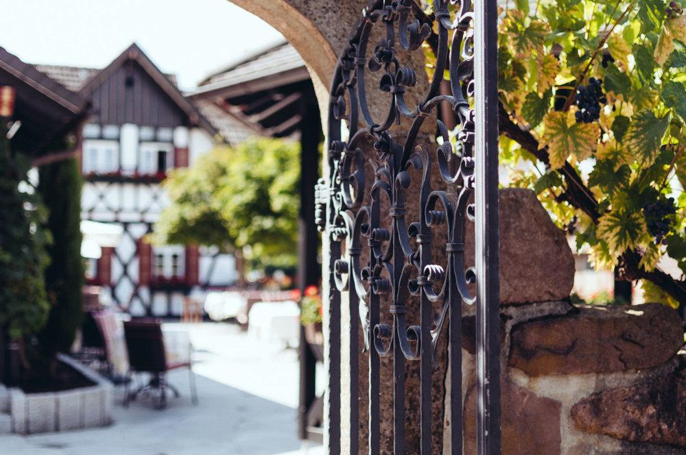 Riesling-Places-Gasthof-Rebstock-Waldulm-0076.jpg