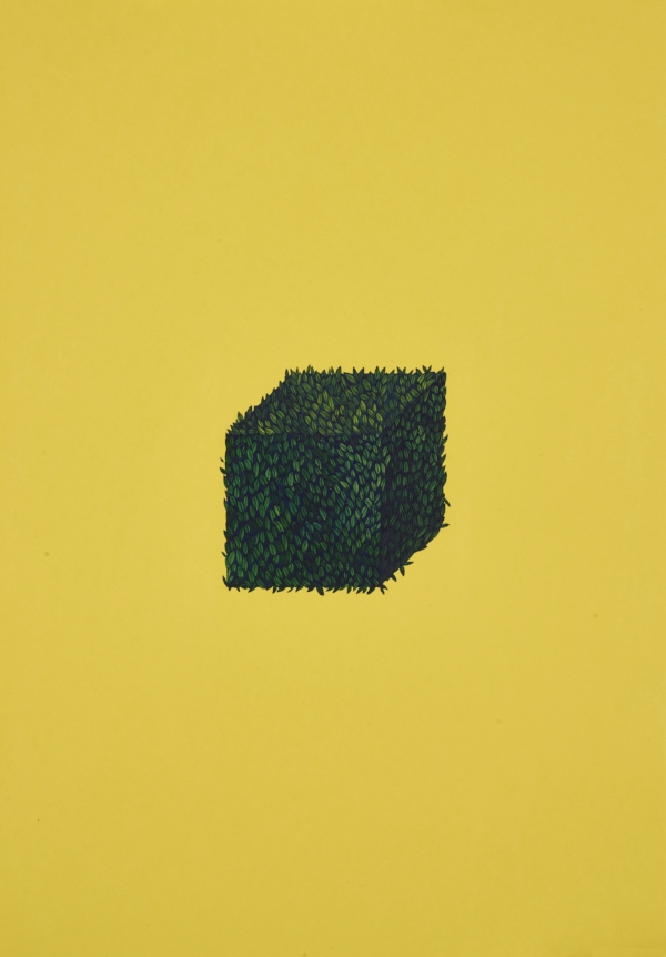 Wardha Shabbir, A Cube 2017