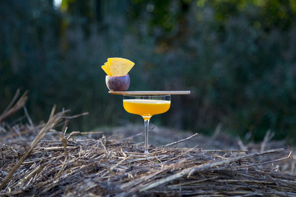 Cornstar Martini