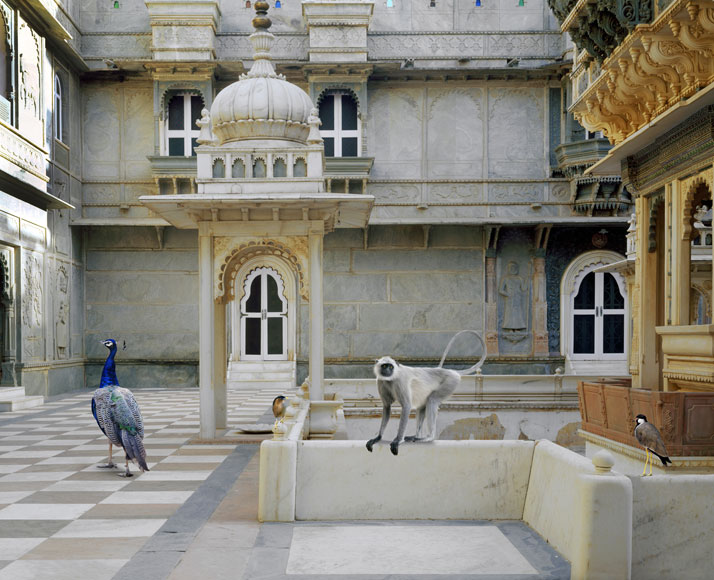 3_Photographer_Karen_Knorr_India_Song_yatzer.jpg