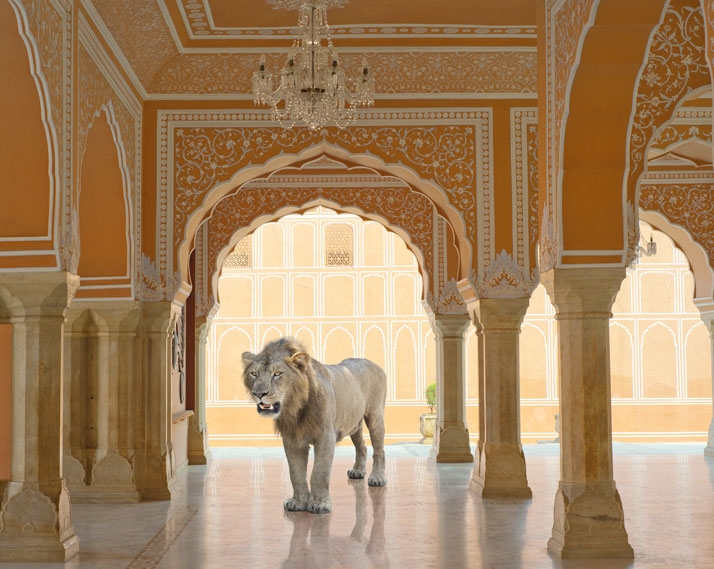 8_Photographer_Karen_Knorr_India_Song_yatzer.jpg