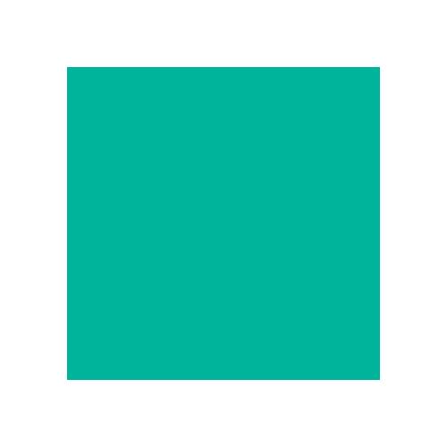 10x-manjsi.png