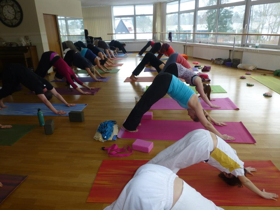 Vinyasa Yoga, Heated Yoga - w/ Miss Macy