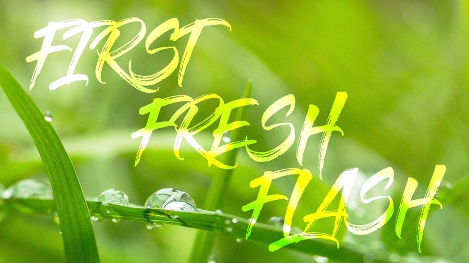 First Fresh Flash.jpg