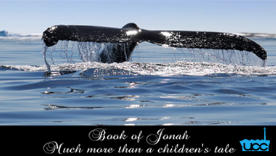 Book of Jonah     The Book of Jonah