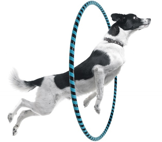 Don't jump through hoops, we're here to help. -