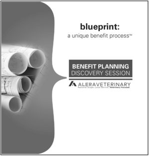 The benefits blueprint strategic planning alera veterinary alera vet discovery coverg malvernweather Images