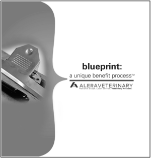 The benefits blueprint strategic planning alera veterinary blueprint cover shotg malvernweather Gallery