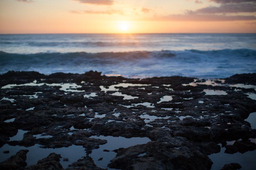 SEWELLPHOTOGRAPHY_OAHU_HAWAII_2019025.JPG