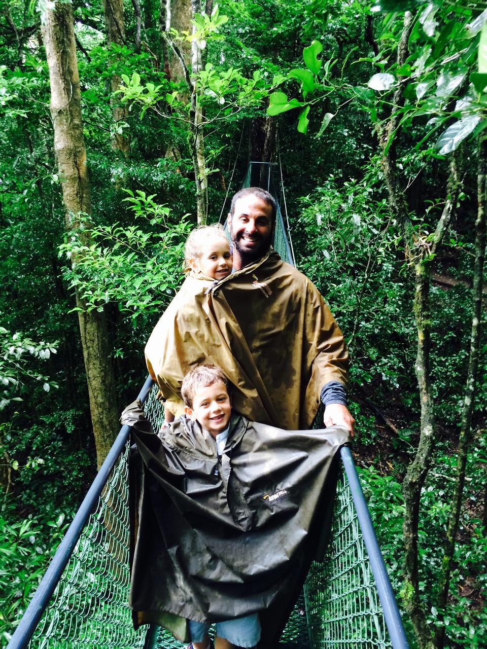 costaricarianforest.jpeg