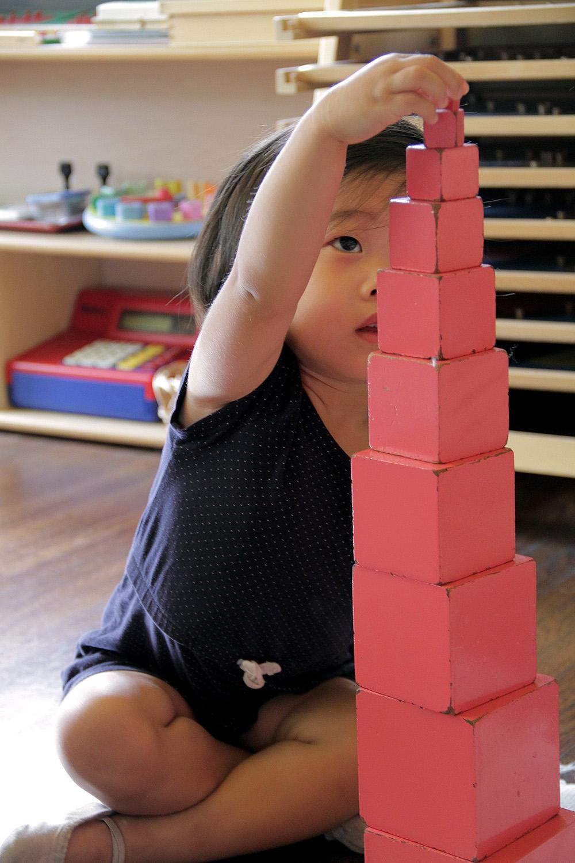 pinktower.jpg