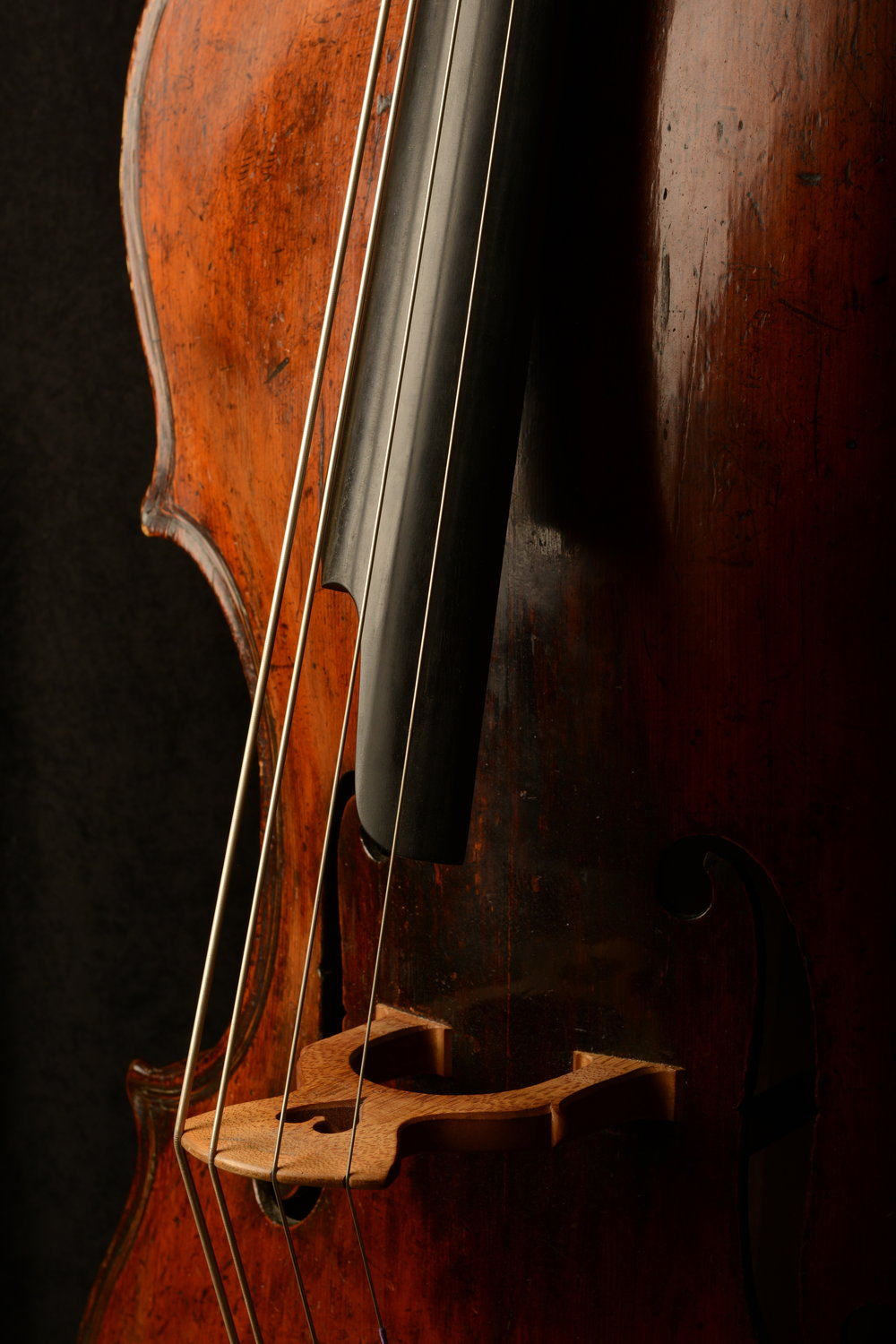 The Double Bass Tuned in Fifths: Demanded by the Orchestral Repertoire, Allowed by Modern Technology, and Facilitated by Current Bass Pedagogy - by Matthew Perrin