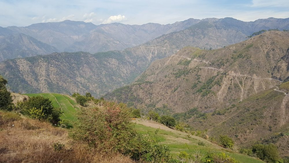 himalayan foothills.jpg