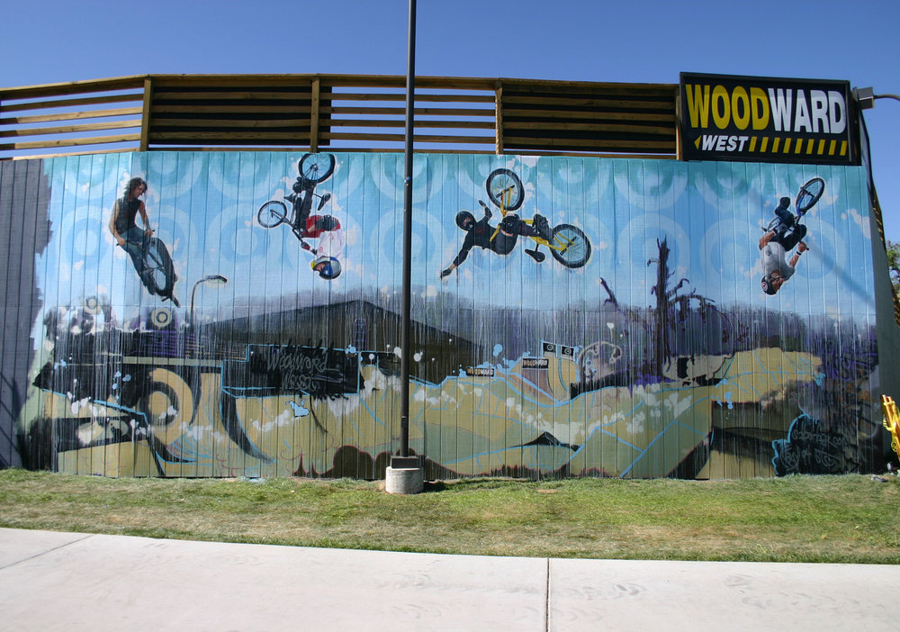 Outdoor Mural of Hoffman Bikes Team for Target at Woodward West, BMX Skateboard Camp, 2005
