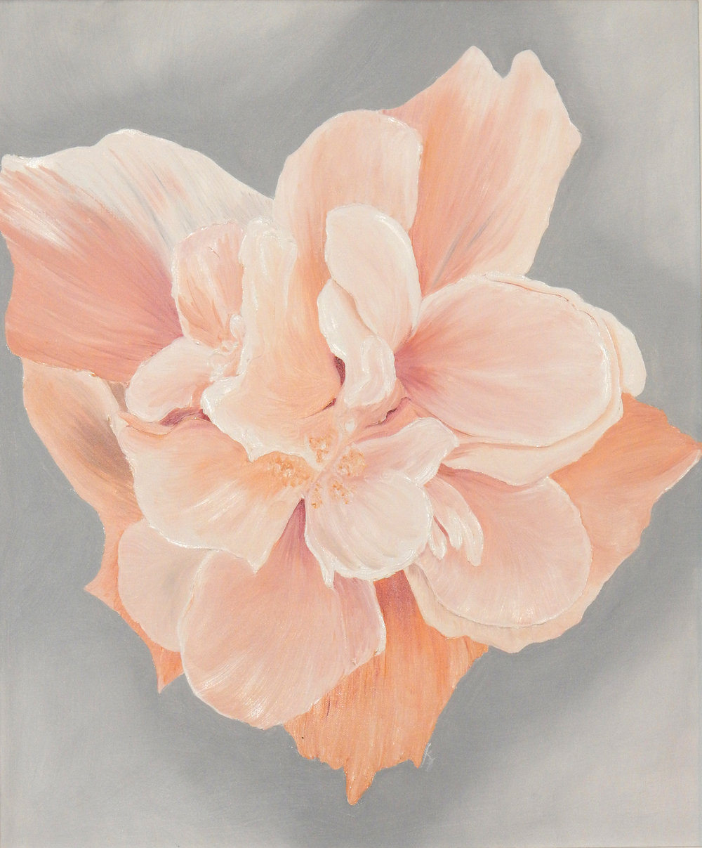 Peach Double Hibiscus  2017 Oil on canvas 24 x 20 inches