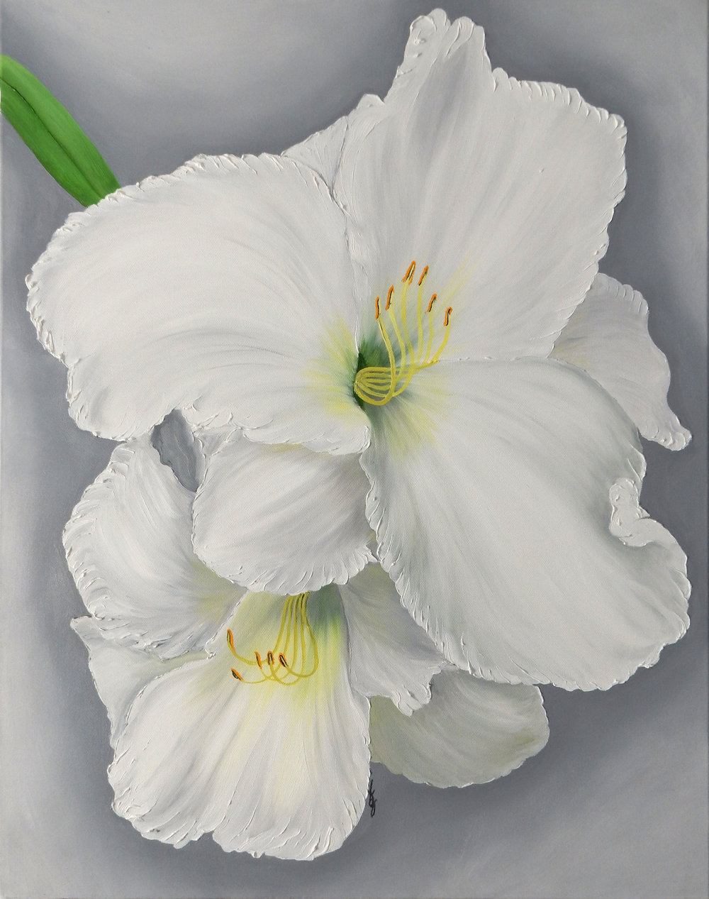 White Daylily Double  2017 Oil on canvas 28 x 22 x 1.5 inches