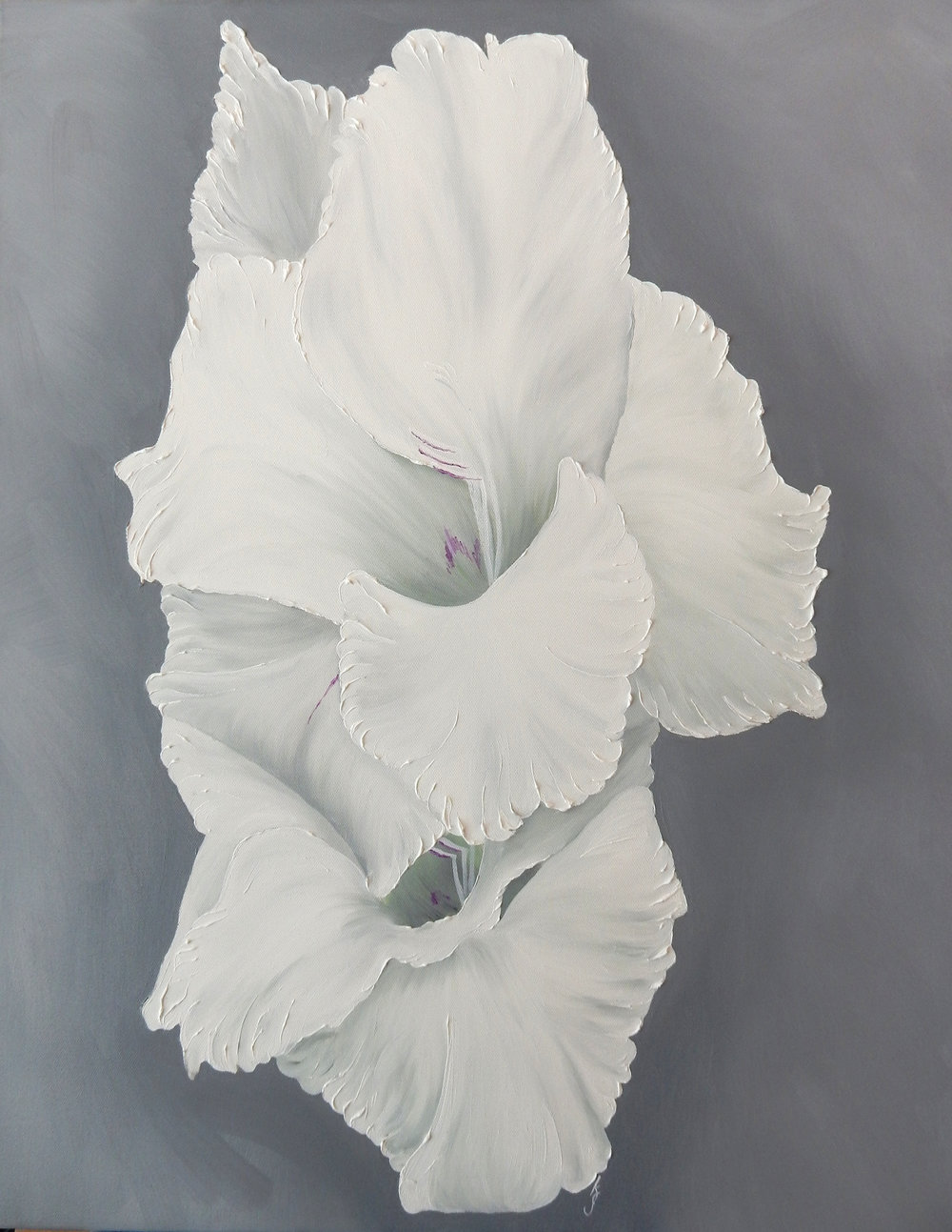 White Gladiolus Double II  2017 Oil on canvas 28 x 22 x 1.5 inches
