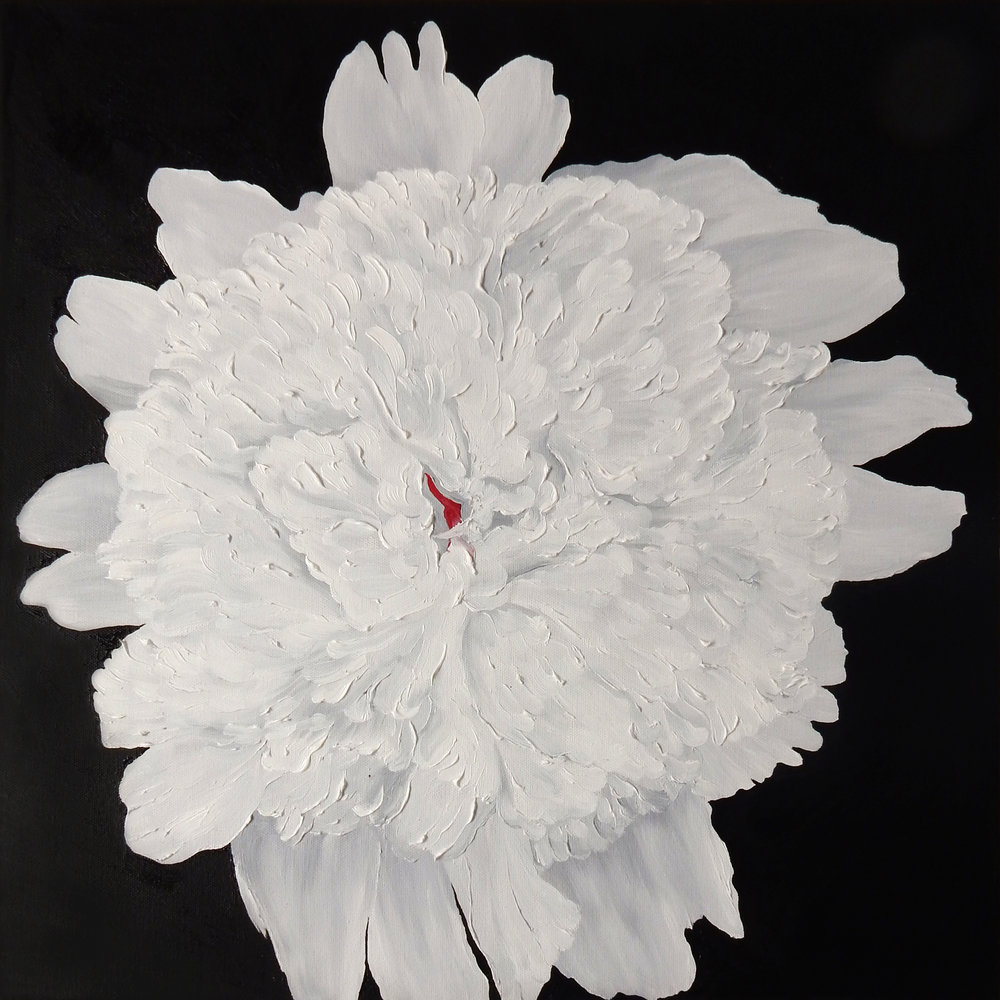 White Peony  2017 il on canvas 20 x 20 x 1.5 inches