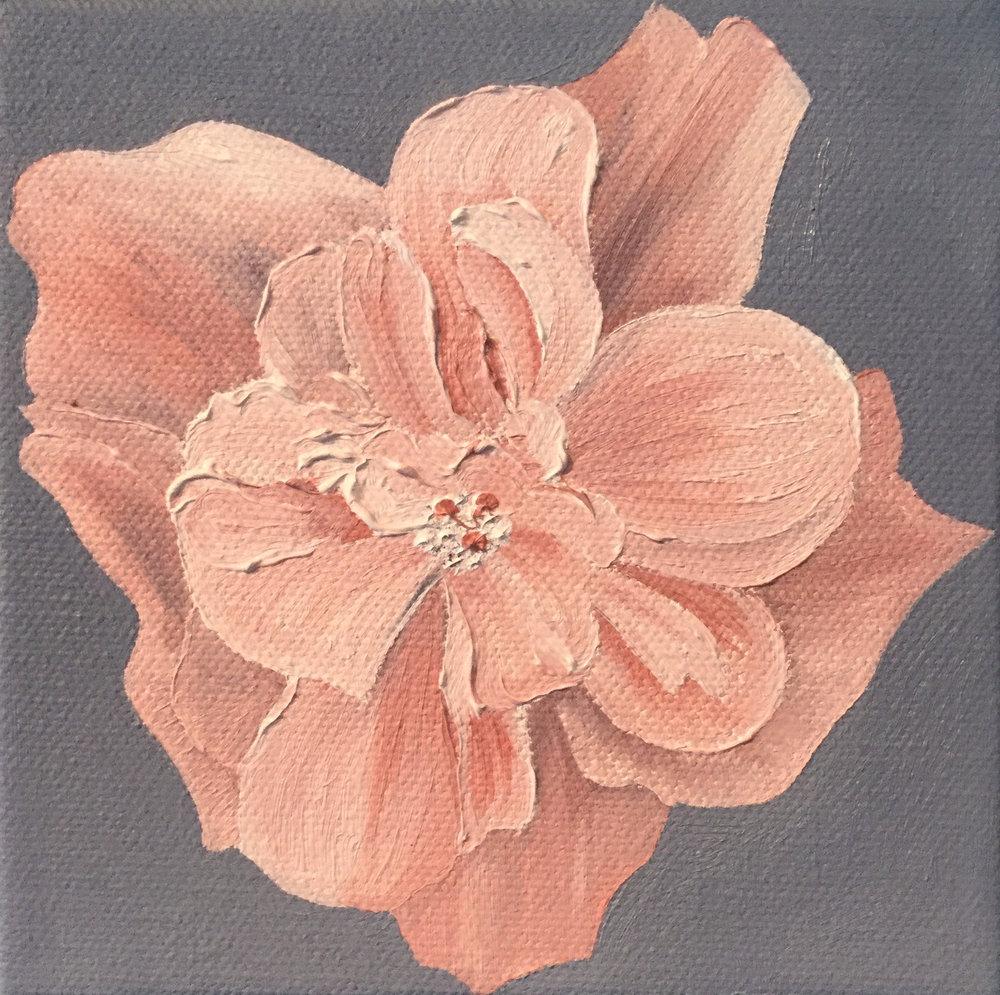 Peach Hibiscus , 2017 551291572117 Oil on canvas 5 x 5 x 1.5 inches