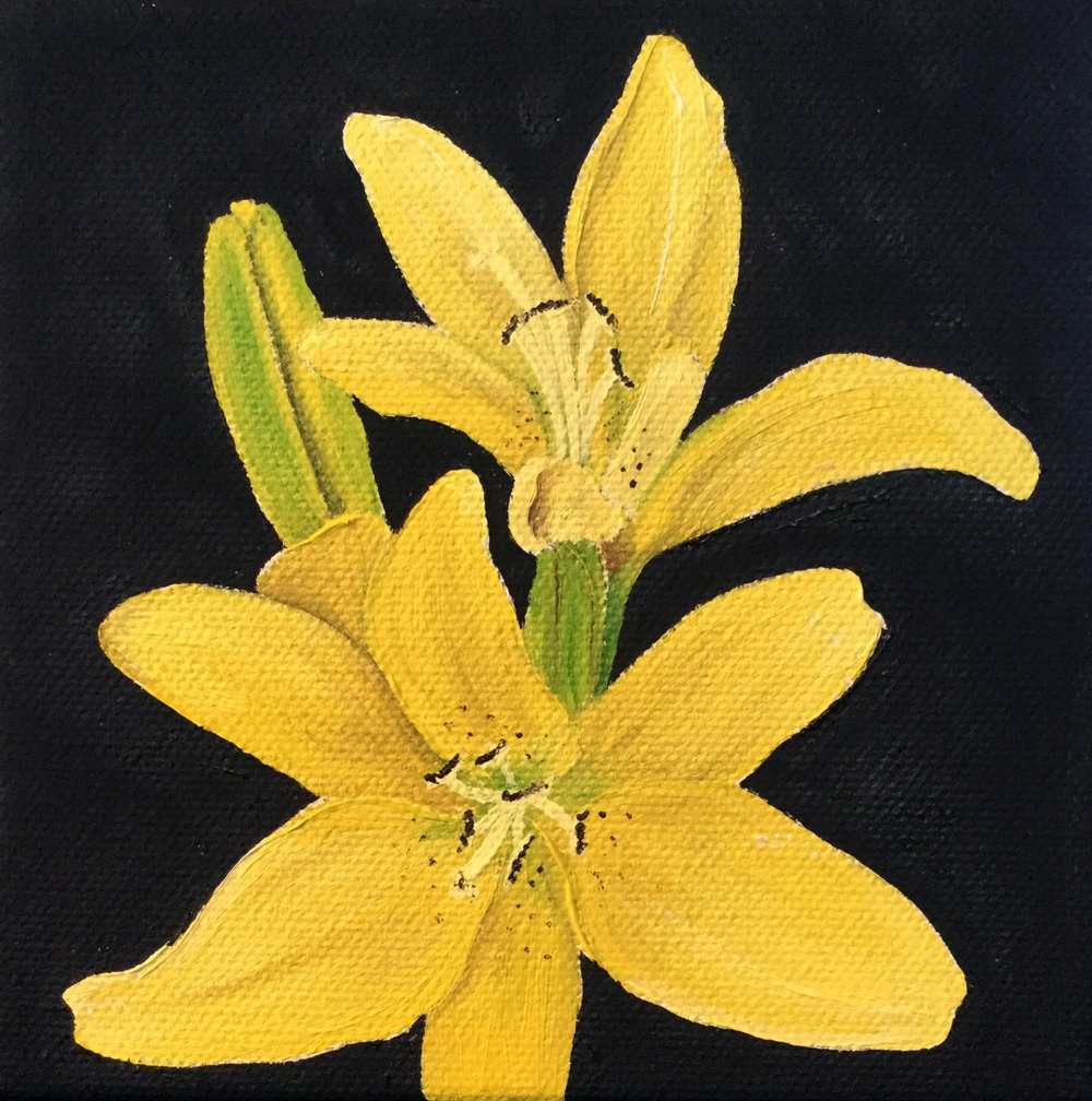 Yellow Lilly , 2017 556211771817 Oil on canvas   5 x 5 x 1.5 inches